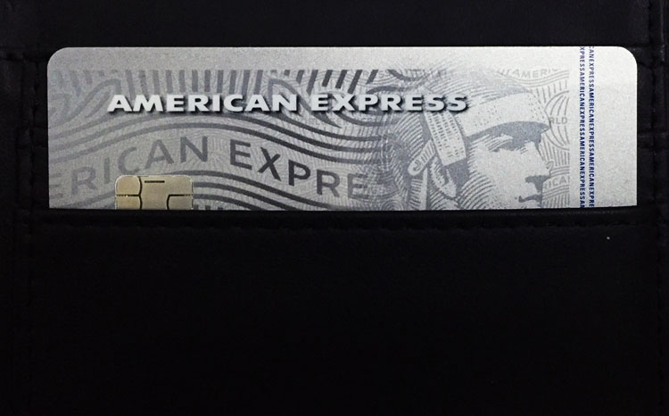 American Express Platinum Travel Credit Card in my Wallet
